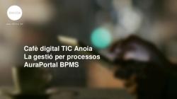 Els sistemes de Gestió de Processos de Negocis (BPM)